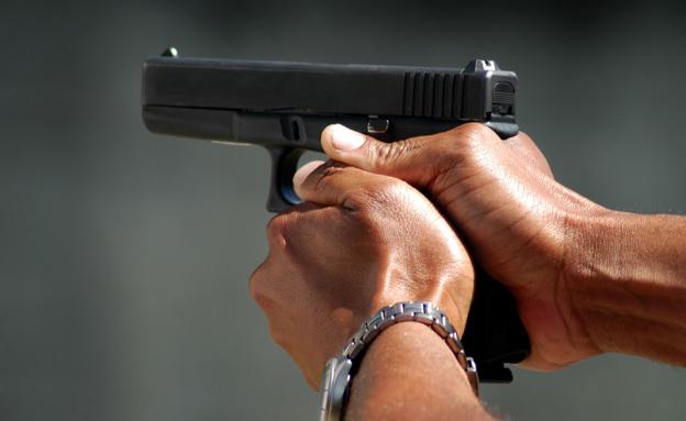 עתירה: לא להרחיב מתן רישיונות לנשק (צילום: Glenn McGloughlin, חדשות)