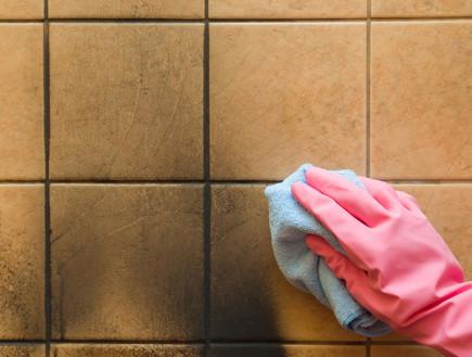 ניקוי אריחים (צילום:  FotoDuets, Shutterstock)