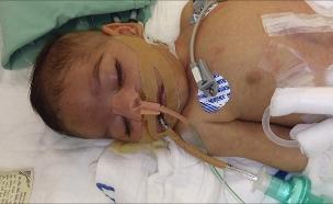 אדיר בן 8 חודשים שגר בבית החולים (צילום: חדשות)