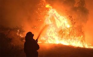 """שריפה בחיפה (צילום: דוברות כב""""ה, חדשות)"""