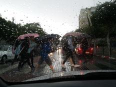 גשם (צילום: הדס לביא, חיפה, חדשות)