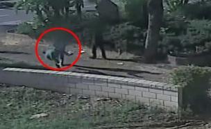 אם ל-2 הותקפה - בגלל קרמבו: צפו בכתבה (צילום: חדשות)