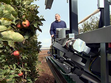 מכונה לקטיפת תפוחים