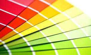 הכל על עיוורון צבעים (צילום: mako)