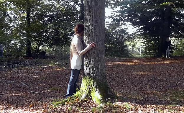 מרגישים לחוצים? נסו לחבק עצים (צילום: AP, חדשות)