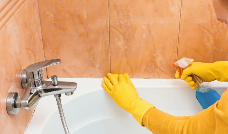 ניקוי אמבטיה (צילום: Anastasiya Aleksandrenko / Shutterstock.com)