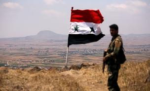 צבא סוריה מתבסס סמוך לגבול ישראל (צילום: רויטרס, חדשות)