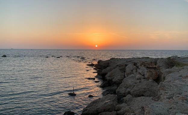ים (צילום: אביב בצון)