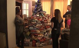 הגזמת חג המולד (צילום:  Photo by Flash90)