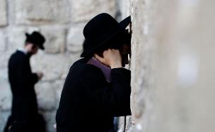 נתונים חדשים על החרדים בישראל (צילום: רויטרס, חדשות)