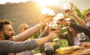 חברים שותים יין (צילום: shutterstock | View Apart)