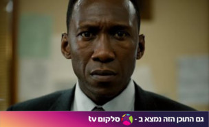 בלש אמיתי 3 (צילום:  2018 ©  Home Box Office, Inc. All rights reserved., סלקום TV)