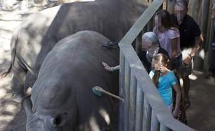 מתחם הקרנפים (צילום: פייסבוק\Brevard Zoo)