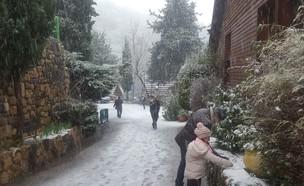 שלג בחרמון (צילום: כפר הנופש רימונים)