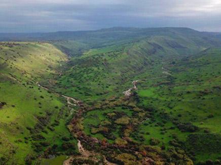 הרי הגליל והגולן כוסו ירוק. נחל דליות