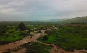 השפעות הגשם: שיא בזרימת הנחלים (צילום: סער הופמן, חדשות)