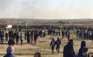 מפגינה נהרגה ועשרות נפצעו (צילום: צילומים פלסטיניים, חדשות)