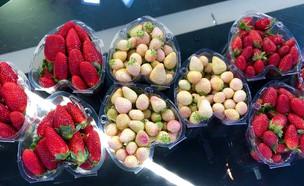 זני תות חורפיים  (צילום: ריטה גולדשטיין, אוכל טוב)