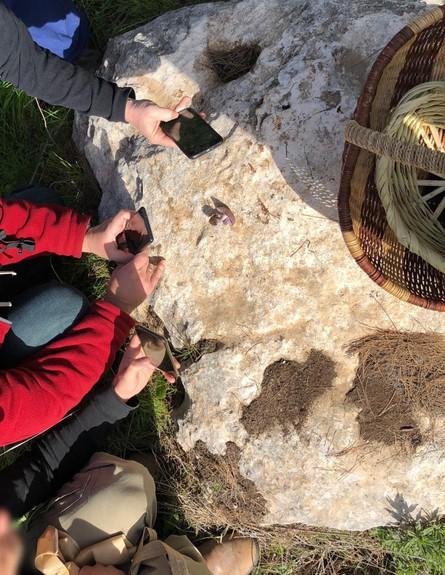 ליקוט פטריות ניצן - מצטופפים לצלם אחלמית (צילום: ניצן לנגר, אוכל טוב)