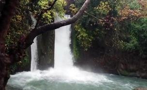 זרימה חזקה בבניאס (צילום: רשות הטבע והגנים, חדשות)
