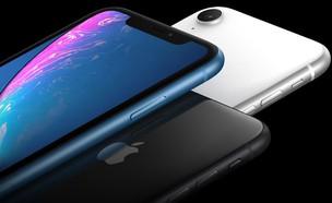 iPhone XR (יח``צ: באדיבות החברה)