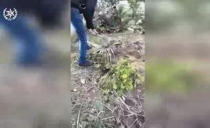 תיעוד: חופר קבר לאחותו (צילום: דוברות המשטרה, חדשות)