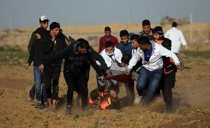 עימותים על הגדר, ארכיון (צילום: רויטרס, חדשות)