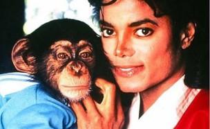 מייקל ג'קסון (צילום: מעמוד האינסטגרם missbiziocouture)