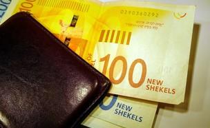 ארנק עם כסף (צילום: Zilan2000, shutterstock)