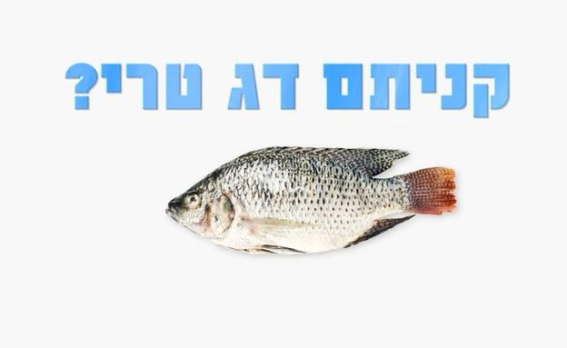 טיפים להכנת דג