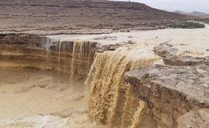 גב ילק נמצא דרומית למכתש רמון (צילום: צור נצר רשות הטבע והגנים, חדשות)
