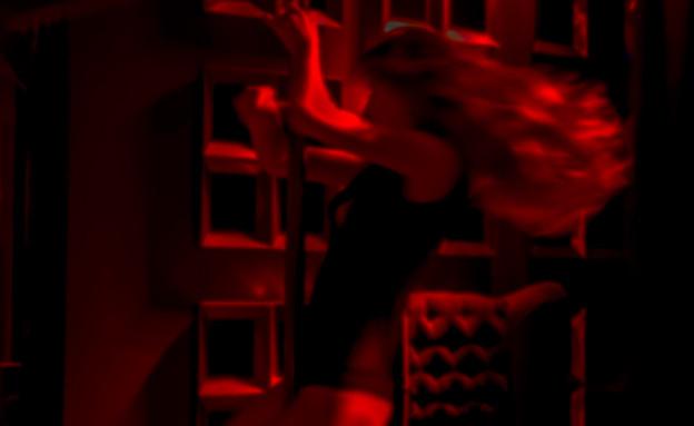 מופע חשפנות (צילום: shutterstock | A_Lesik)