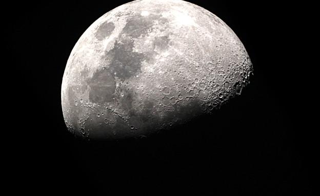 ירח (צילום: taffpixture, ShutterStock)