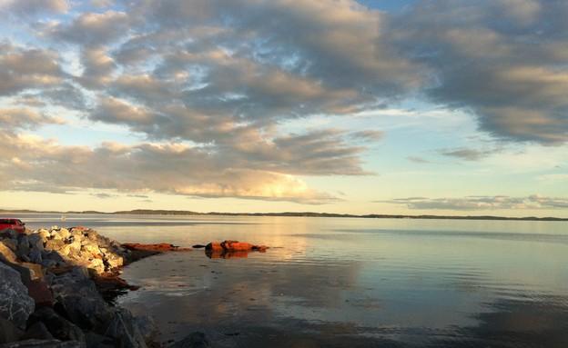 ניו ברונזוויק (צילום: מירב טלמור קשי)