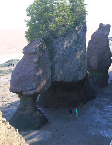 Hoppwwell Rocks