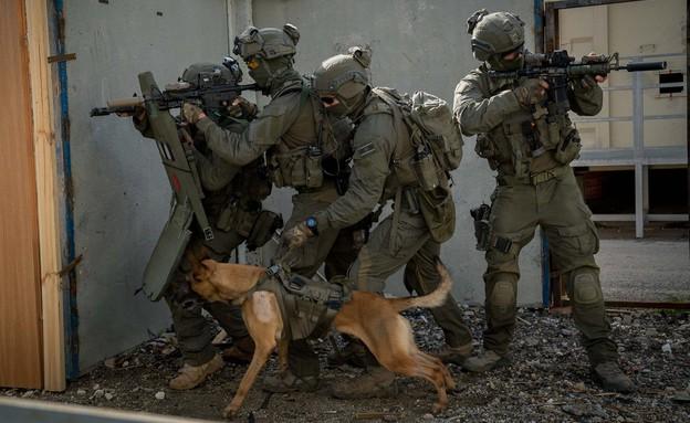"""הכלב רמבו (צילום: דוברות מג""""ב)"""