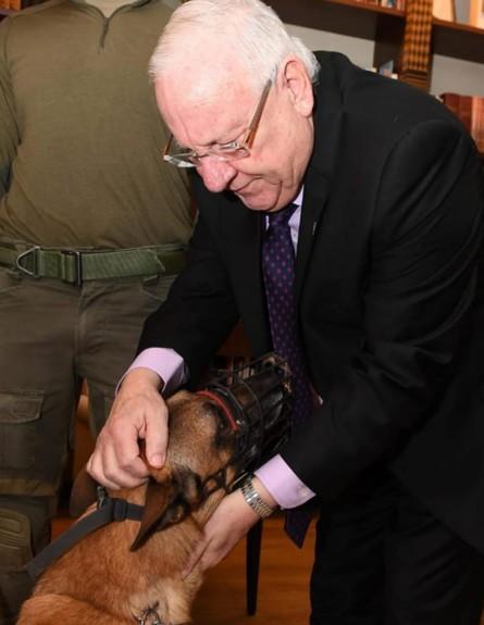 """הכלב רמבו והנשיא ריבלין (צילום: מארק ניימן, לע""""מ)"""
