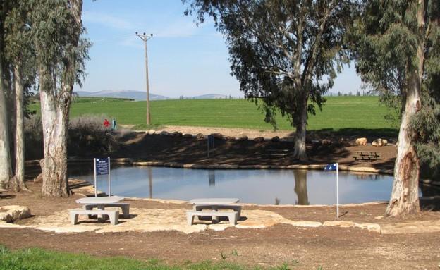 פארק המעיינות בריכת הטחנה (צילום: אשחר בצר)