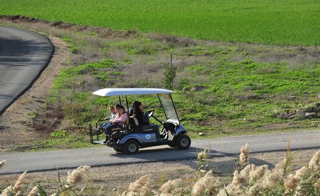 רכבים ירוקים בפארק המעיינות (צילום: שירה סגל בורוכוב)