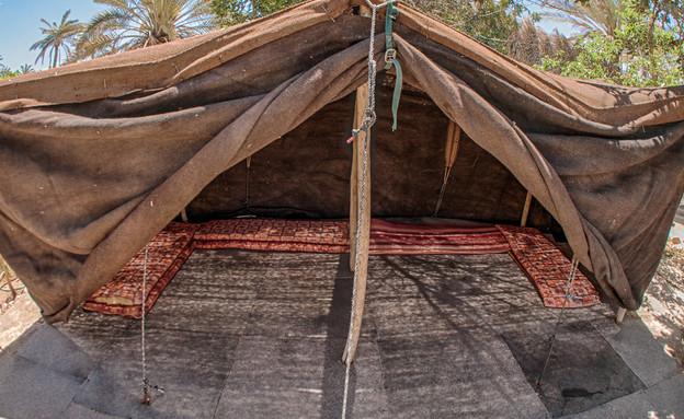 אוהל משפחתי (צילום: יוני גרינצר)