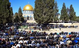 המסר לירדן: התערבו במצב בהר הבית (צילום: Flash 90, Muammar Awad, חדשות)