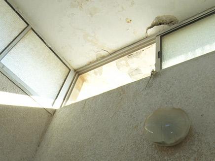 החלון ממנו יצא החשוד למרפסת שכניו