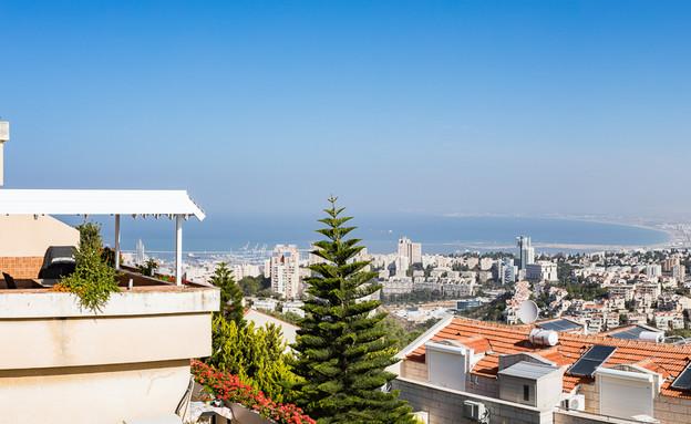 יקינתון (צילום: מיקי קודה, חיפה סנצ'ורי 21)