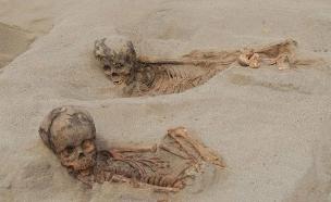 שרידי שלדים של ילדים שנמצאו באתר ארכאולוגי בפר (צילום: CNN, חדשות)