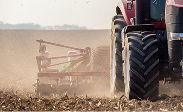 בשורה לחקלאים (צילום: 123rf, חדשות)