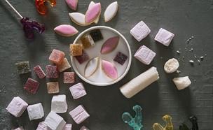 פסטיבל הממתקים (צילום: אנטולי מיכאלו, יחסי ציבור)