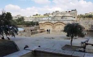 המתיחות במתחם שער הרחמים (צילום: ראאד איברהים, החדשות)