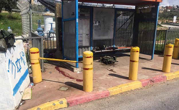 זירת הפיגוע ליד אריאל (צילום: פלאש 90, חדשות)