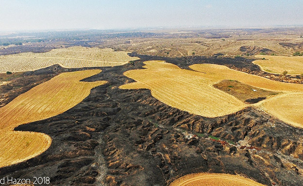 הנזק בשדות בעוטף עזה, ארכיון (צילום: גלעד חסן, חדשות)