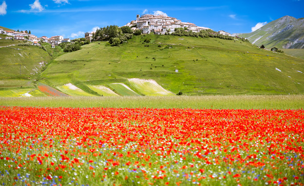 איטליה (צילום: Frank Fischbach, shutterstock)